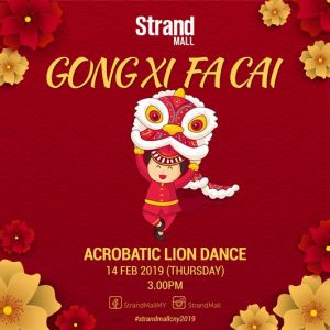 Acrobatic Lion Dance CNY 2019